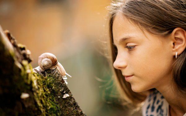 Mädchen beobachtet eine Schnecke, die an einem Baum kriecht.